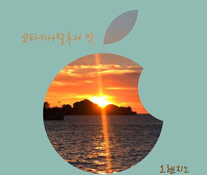 개러지밴드로 만든 곡으로 음원을 출시한 뮤지션 오렌지노